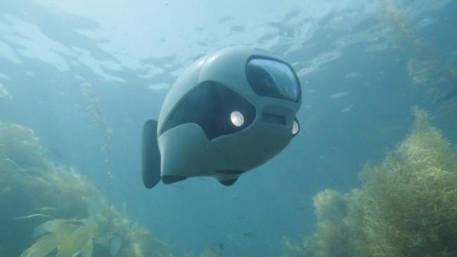 Balık Görünümlü Biyonik Su Altı Robotu Üretildi!
